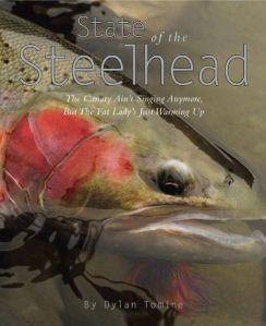 state-of-wild-steelhead