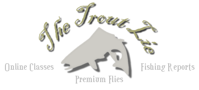 trout_lie_logo1