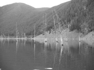 Hebgen Lake 2015 091